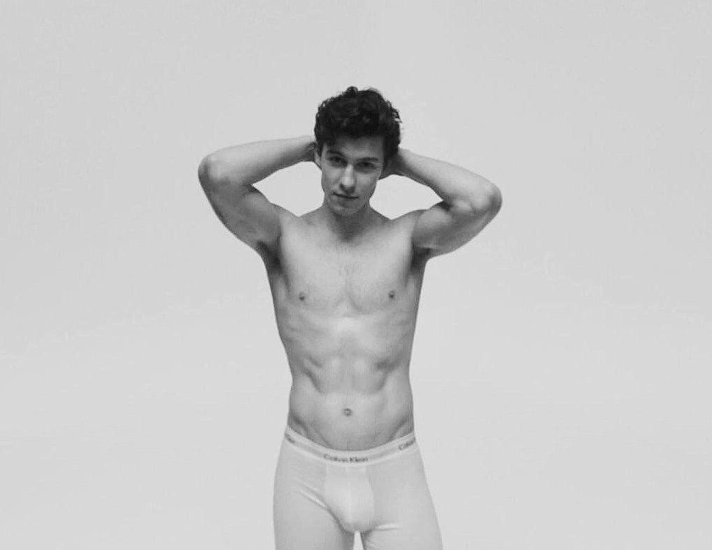 Shawn Mendes modeling underwear visible penis